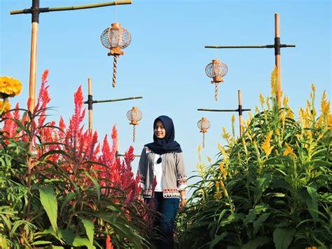 kebun bunga resoinangun keindahan wisata   jogja