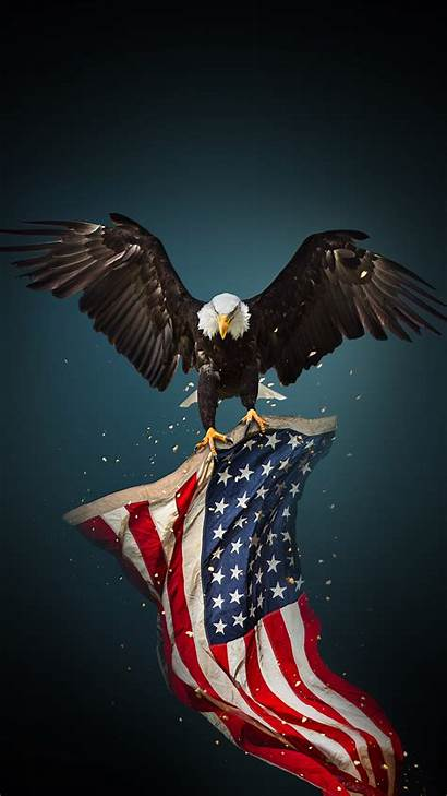 Eagle Flag American Bald Iphone Wallpapers Phone