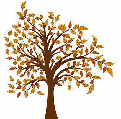 Fall Tree Clipart Clip Clipground Cliparts