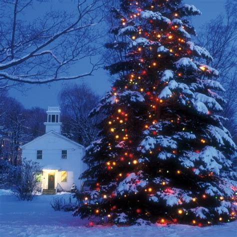 enjoy  festive time   year  great large