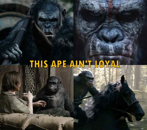 Planet Of The Apes Meme - ape loyalty bad koba wicked horror