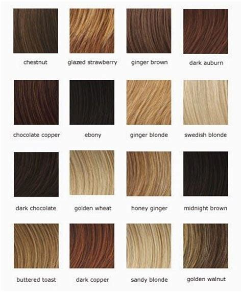 Shades Of Hair Dye by Shades Of Light Brown Hair Color Chart Hair