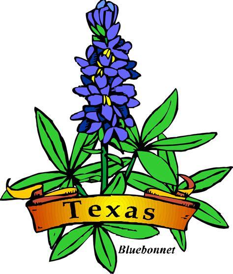 texas theme day camp shac