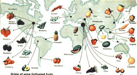 cuisine origin homeworks geography