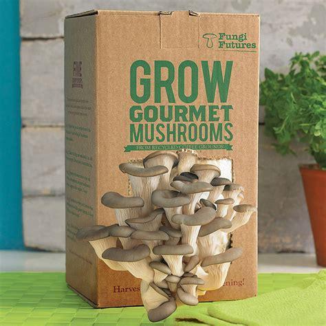 grow your own mushrooms grow your own mushrooms kit by fungi futures notonthehighstreet com