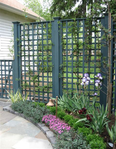 lattice fence with vines trellis lattice and arbors structures plants can grow on