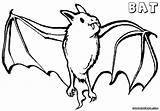 Bat Coloring Pages Vampire sketch template