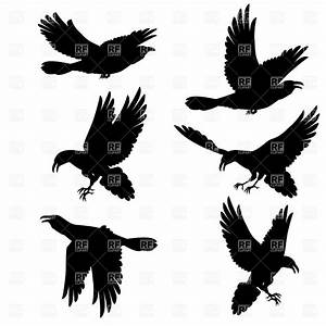 Crow clipart flight silhouette - Pencil and in color crow ...