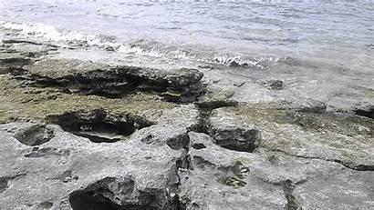 Kauai Shore Rocks