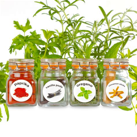 Spice Rack Stickers by 50 Washable Plastic Herb And Spice Jar Labels Spice