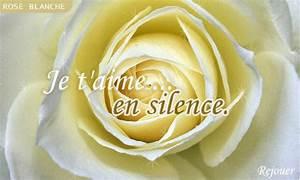 Fleur Rose Et Blanche : carte rose blanche ~ Dallasstarsshop.com Idées de Décoration