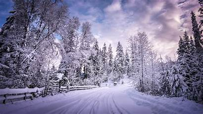 Snow Winter 4k Trees Wallpapers Road Nature