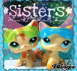 lps cats and dogs do you like lps cats or dogs poll results littlest pet