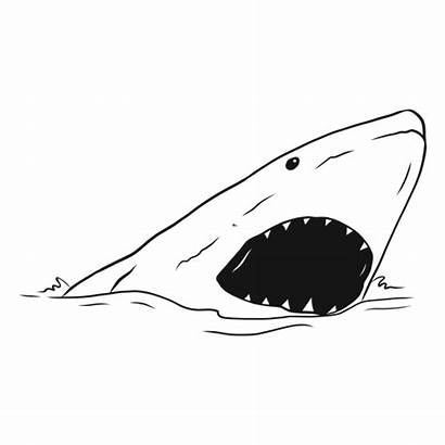 Shark Mouth Sketch Jaw Tooth Sea Svg
