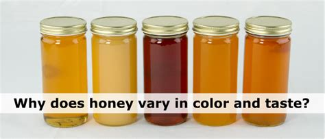 Why Does Honey Vary In Color Texture And Taste?