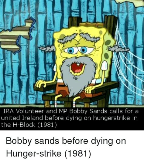 Ira Meme - ira volunteer and mp bobby sands calls for a united ireland before dying on hungerstrike in the