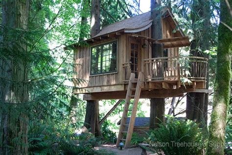 Tree House Master Pete Nelson  Nelson Treehouse And