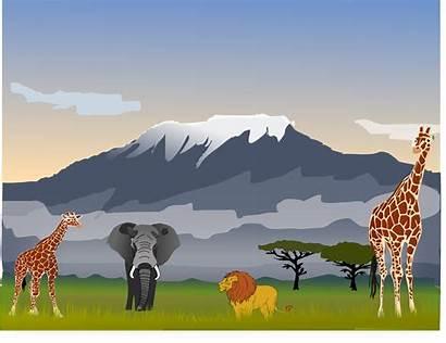 Kilimanjaro Mount Clipart Drawing Kilamanjaro Scenery Vector