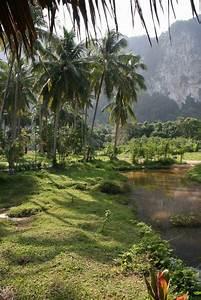 Thailand reisebericht quotao nangquot for Katzennetz balkon mit ao nang garden home resort