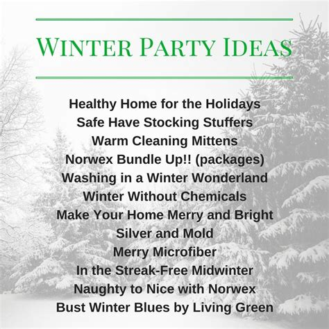 Winter Party Name for Norwex Norwex consultant Norwex