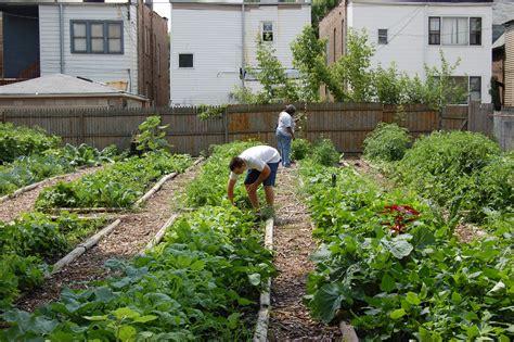 simple diy backyard vegetable garden home design with