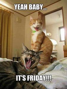 Yeah baby. ..it's Friday!!! | Pic's for PV | Pinterest