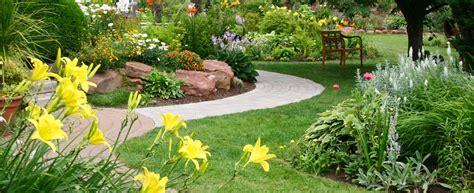 Come eliminare le zanzare in giardino? Hampton