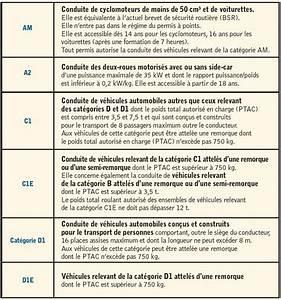 Cerfa Renouvellement Permis Poids Lourd : les nouveaux permis europ ens c 39 est parti ~ Medecine-chirurgie-esthetiques.com Avis de Voitures