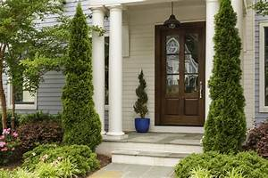 Frame Entryways With These Unique Evergreens Fast