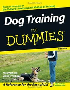 How to train your dog to obey dog obedience training for Dog training for dummies