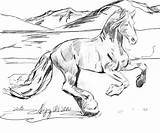 Horse Coloring Pages Herd Wild Realistic Printable Getcolorings sketch template