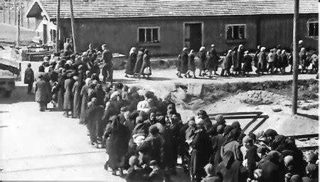 les chambres à gaz 1943 auschwitz vers la chambre à gaz 2 jpg florentine