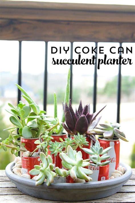 nifty soda  diy ideas     garden