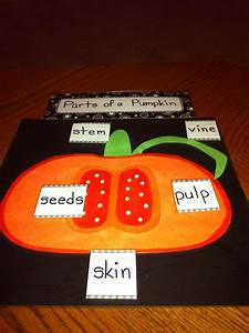 Parts Of A Pumpkin Poster