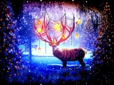 merry chiims wallpaper reindeer in deer animals background wallpapers on desktop nexus image 1612847