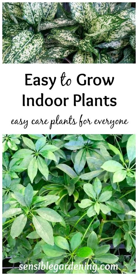 1000+ Images About *gardening Ideas, Tips, And Tricks* On