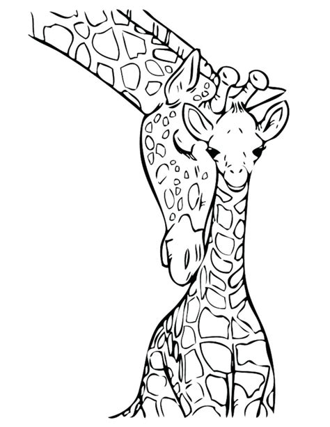 giraffe coloring pages    clipartmag