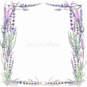 Frame with lavender stock illustration. Illustration of ...