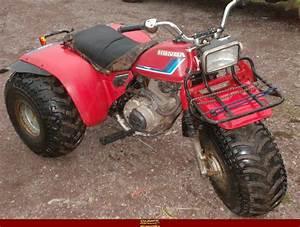 1983 Honda Atc 200 Manual