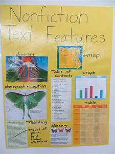 Iteach 1 1  Nonfiction Text Features  Freebie