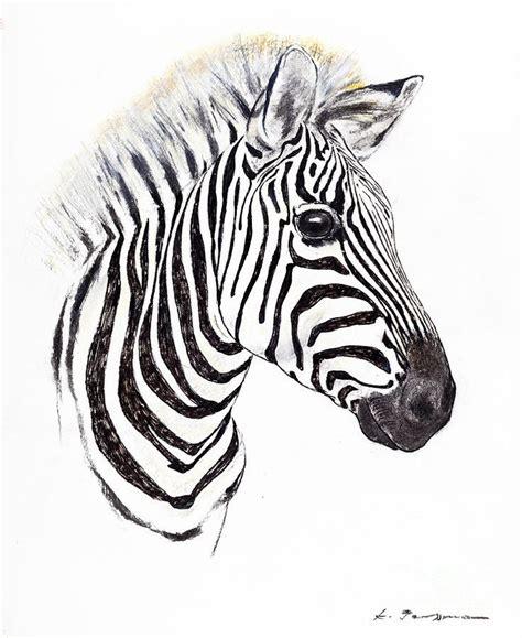step  step drawing zebras zebra portrait pastel