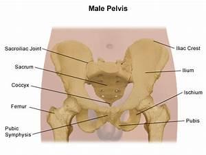 Pelvis Problems