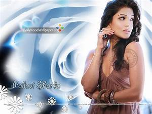 Pallavi Sharda Wallpaper Collection 2013 - XciteFun.net