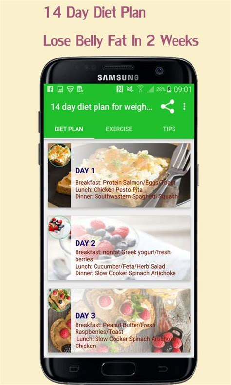 day diet plan lose belly fat   weeks  android