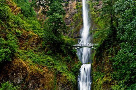 multnomah falls isocarp