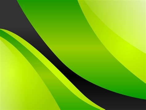 Black White And Green by Lime Green And Black Wallpaper Wallpapersafari