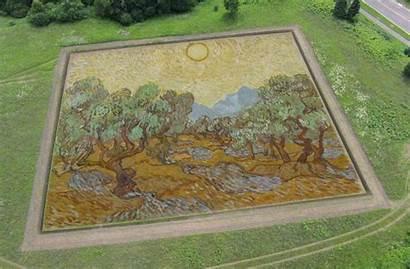 Herd Stan Gogh Painting Olive Minneapolis Institute