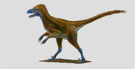 Three New Raptor Dinosaurs Discovered In Utah