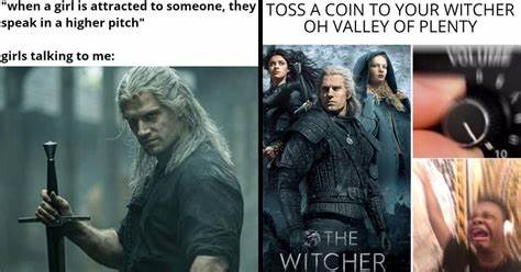 Toss A Meme To Your Witcher (37