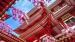 Www Daenischesbettenlager De Angebote : tempel singapur angebote aida kreuzfahrten kussmund ~ Bigdaddyawards.com Haus und Dekorationen